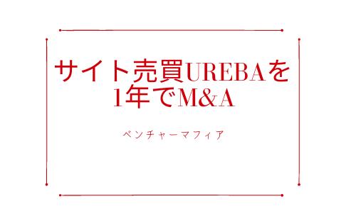 サイト売買UREBAを1年でM&A