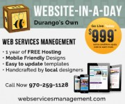 durango web design in a day web services