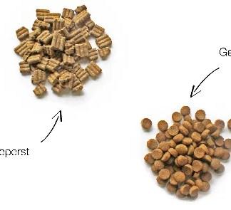 Droogvoeding voor de hond