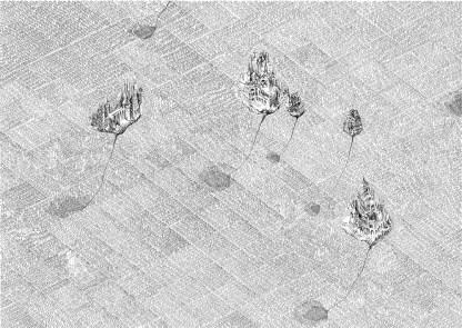 Eduard Klena (SK), Fields & Grounds. Meadows & Groves
