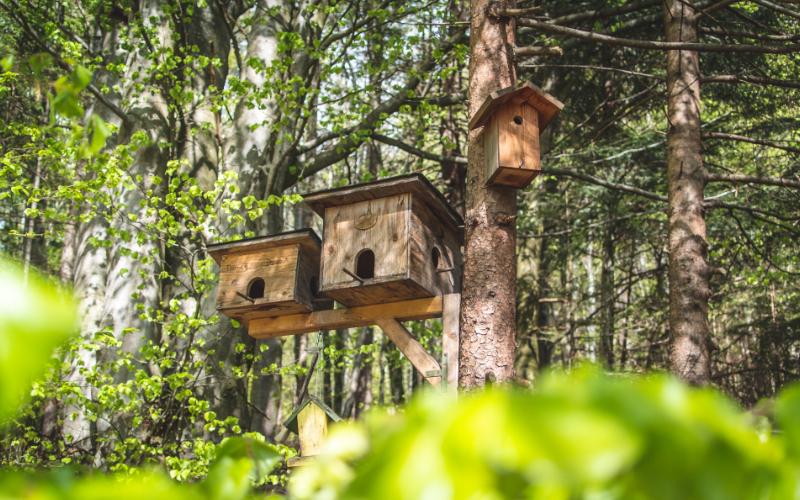 Natuurpunt Waasland vogelkasten