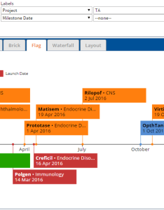 Our clients love flag charts because they help communicate upcoming milestones quickly and effectively also save tons of time with enrich when gantt fail use to show events rh enrichconsulting