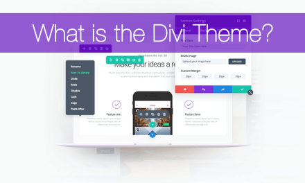 What is the Divi Theme?