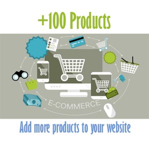 100 extra products web design belfast