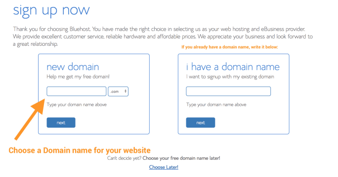 Choose a domain name: How to Create a Website in Cameroon Simple Guide