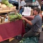 webDohertyFarmers_Market-25