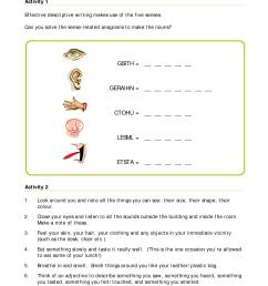 5 Senses Worksheet Answers   Printable Worksheets and Activities for  Teachers [ 1650 x 1275 Pixel ]