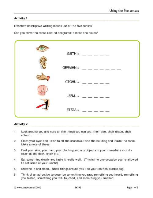 small resolution of 5 Senses Worksheet Answers   Printable Worksheets and Activities for  Teachers