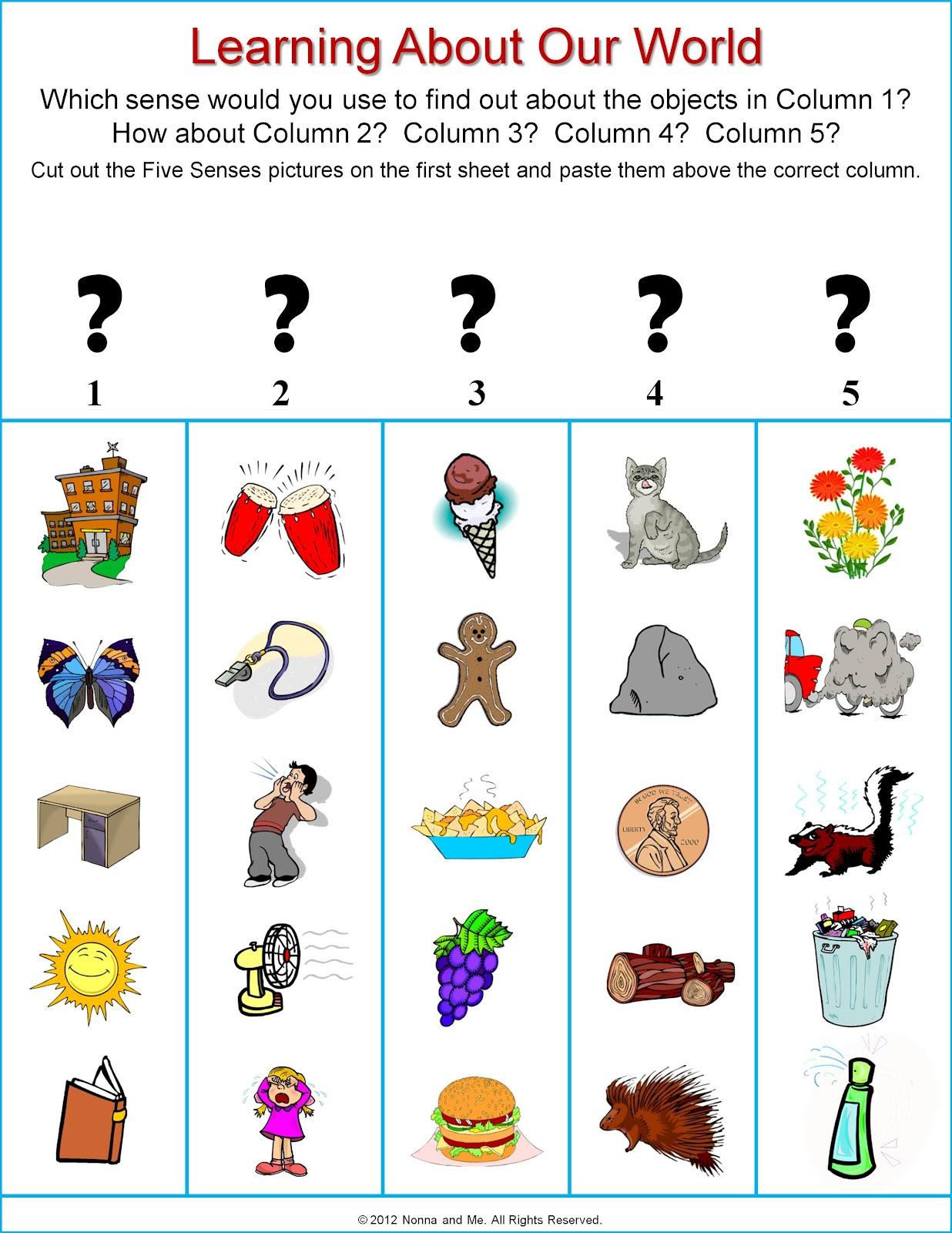 5 Senses Clipart Sense Organ 5 Senses Sense Organ