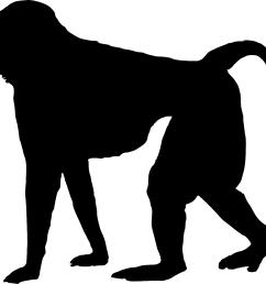 ape clipart baboon [ 1350 x 1123 Pixel ]