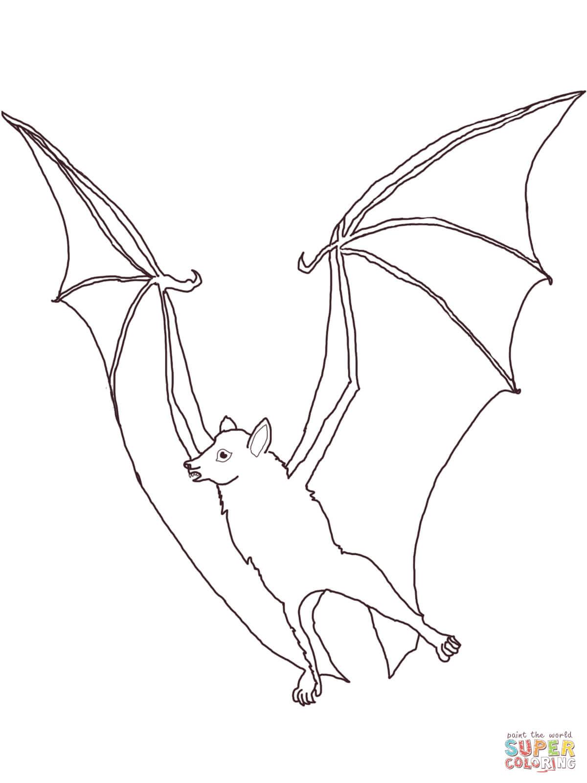 Bat Clipart Flying Fox Bat Flying Fox Transparent Free