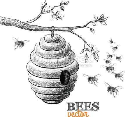 Beehive clipart tree drawing, Beehive tree drawing