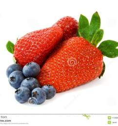 berry clipart strawberry blueberry bunch pencil and in [ 1300 x 957 Pixel ]