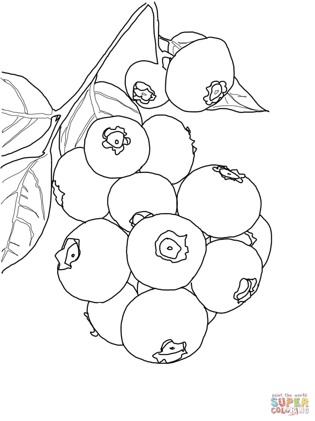 Blueberries Clipart Black And White Blueberries Black And