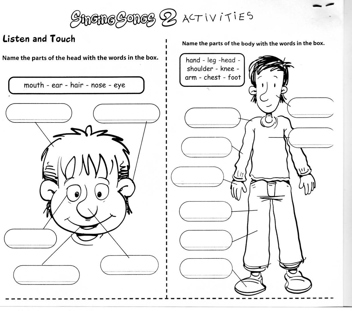 Body Clipart Worksheet Body Worksheet Transparent Free