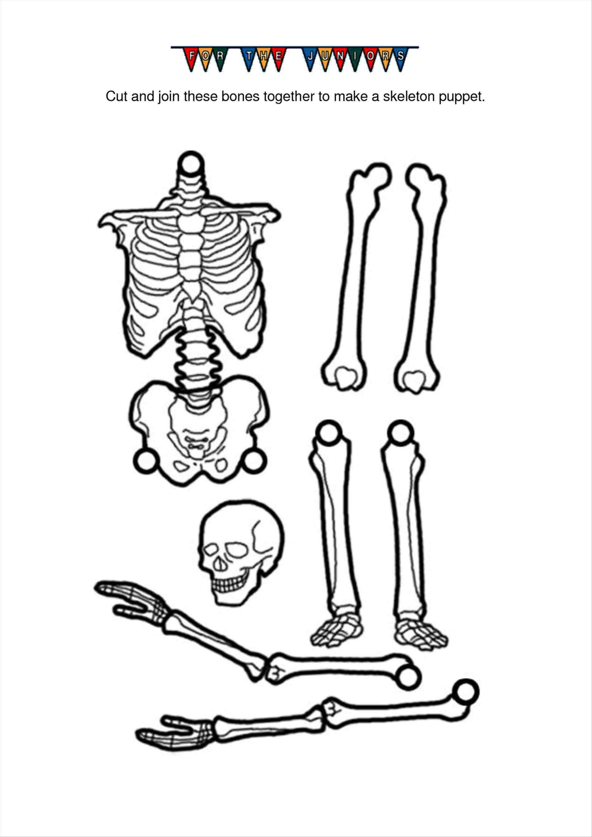 Bone Clipart Cut Out Bone Cut Out Transparent Free For