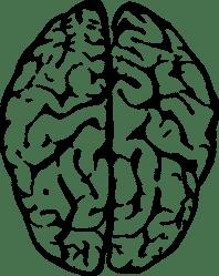 brain clipart transparent background peaceful webstockreview