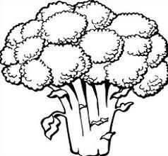 Broccoli clipart black and white, Broccoli black and white