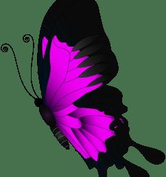 clipart butterfly magenta [ 4323 x 5000 Pixel ]