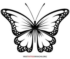 butterfly clipart webstockreview quickly panda