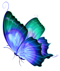 Butterfly clipart transparent background Butterfly transparent background Transparent FREE for download on WebStockReview 2020