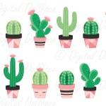 Cactus Clipart Succulent Picture 144465 Cactus Clipart Succulent