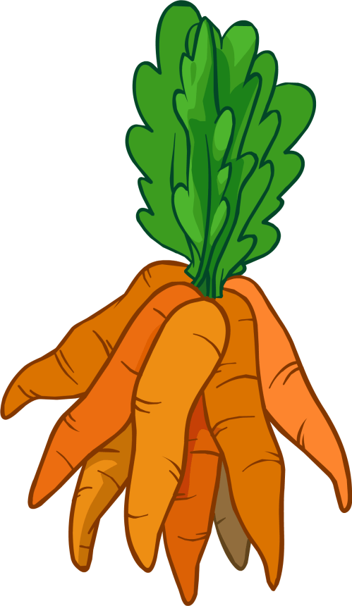 small resolution of reindeer carrots club penguin i clipart carrot