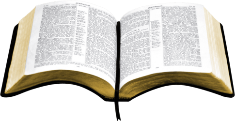 bible holy clipart transparent webstockreview toppng