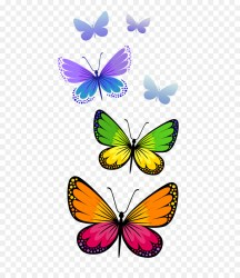 Clipart butterfly transparent background Clipart butterfly transparent background Transparent FREE for download on WebStockReview 2020