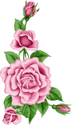 clipart rose doodle transparent flower roses shabby card cross chic webstockreview colorful