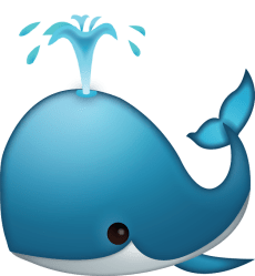 Clipart whale transparent background Clipart whale transparent background Transparent FREE for download on WebStockReview 2020