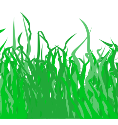 for a lawn big image png grass clipart  [ 2400 x 644 Pixel ]