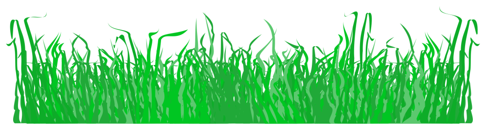 medium resolution of for a lawn big image png grass clipart