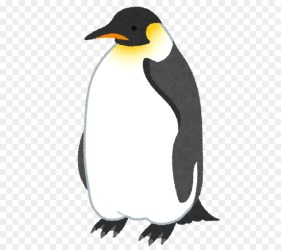 clipart penguin cartoon pengiun transparent clip webstockreview bird