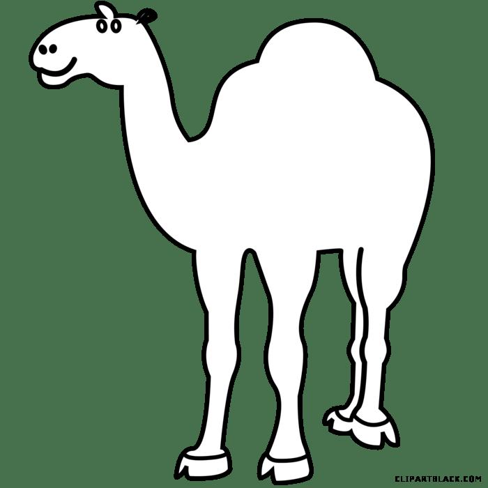 Footprints clipart camel, Footprints camel Transparent