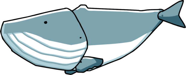 whale scribblenauts beluga clipart transparent wiki wikia fandom powered webstockreview pic clip library
