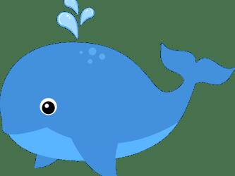 object clipart whale clip transparent webstockreview