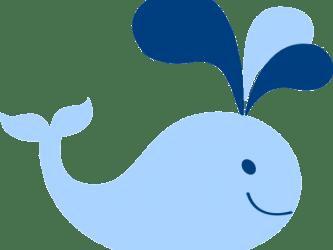 clipart whale easy transparent sailboat shower webstockreview clip pinclipart