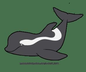 whale pilot clipart webstockreview killer silhouette