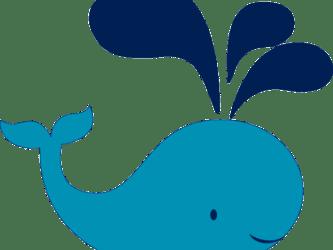 clipart whale transparent webstockreview dumielauxepices