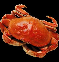 png image purepng free crab clipart crab food [ 1450 x 1324 Pixel ]
