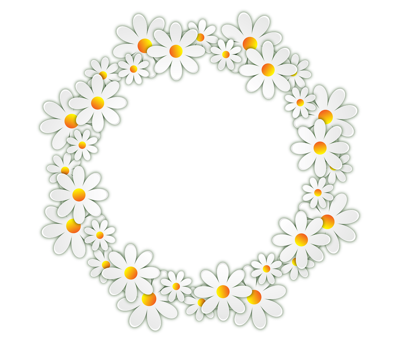 Daisy Clipart Frame Daisy Frame Transparent Free For