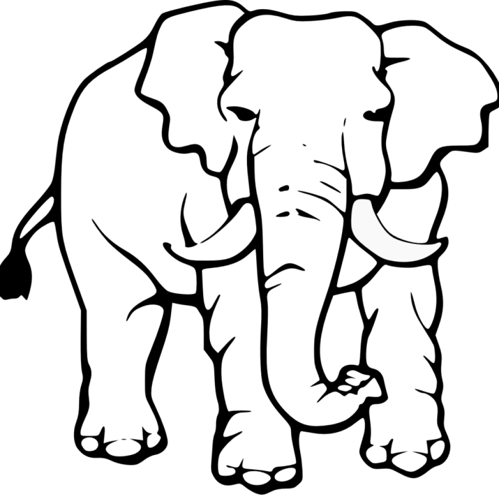 Elephant Clipart Black And White Elephant Black And White Transparent Free For Download On Webstockreview 2020
