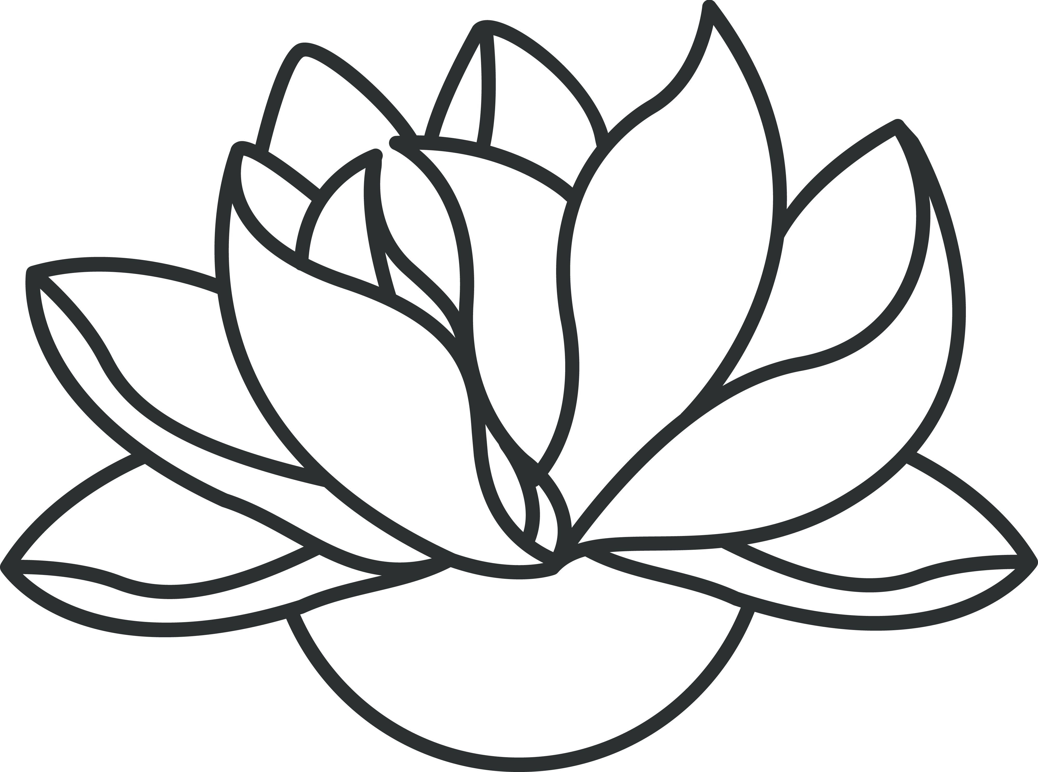 Lotus Clipart Lotus Outline Lotus Lotus Outline