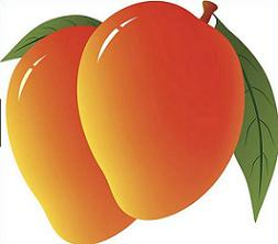 mango clipart mangoes clip fundraising activities webstockreview library
