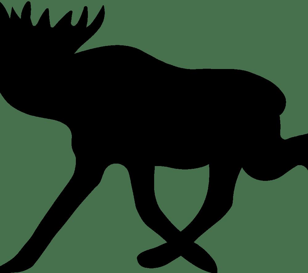 medium resolution of moose clipart real