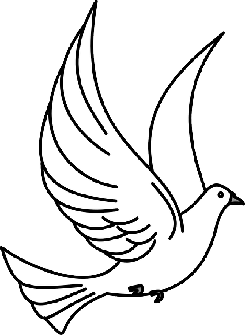 Pigeon clipart funeral dove, Pigeon funeral dove