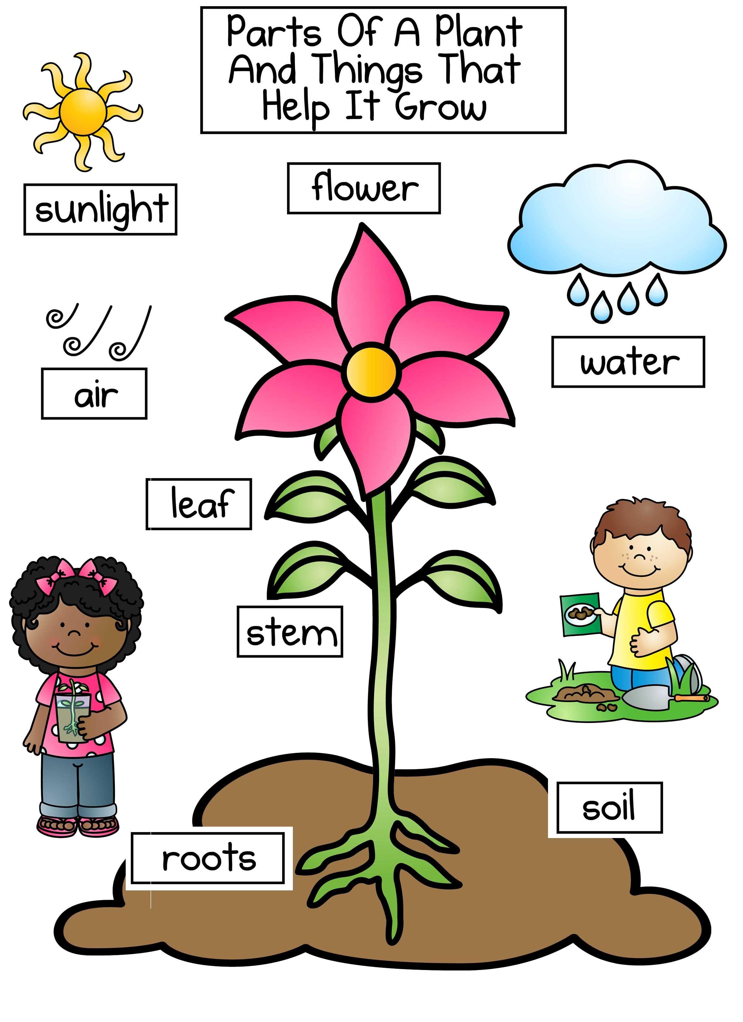 Planting Clipart Part Plant Planting Part Plant