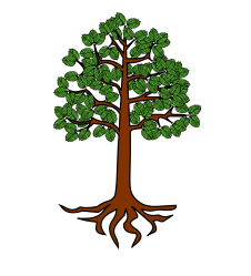 roots tree cartoon clipart transparent webstockreview collection