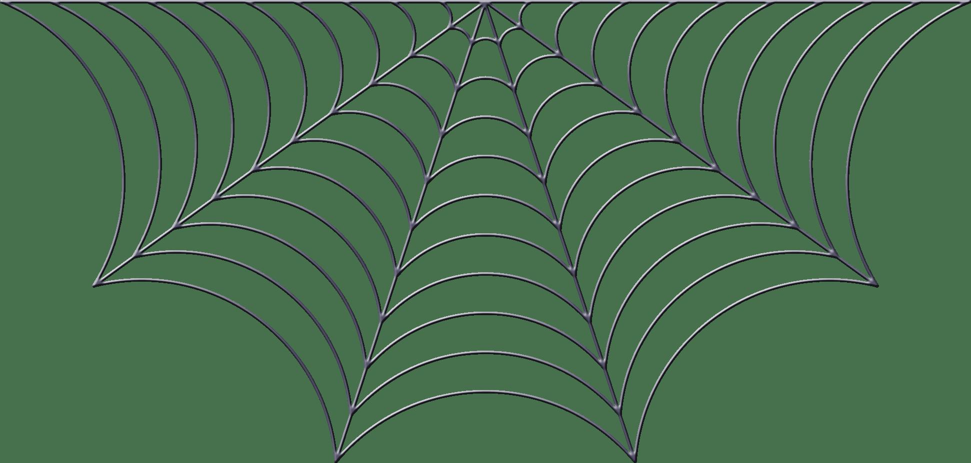 Spiderweb Clipart Food Web Spiderweb Food Web Transparent